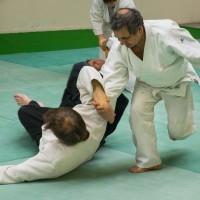 judo-animation-mieux-vivre-expo
